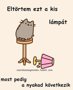 Nyan Cat, Pusheen Cat, Grumpy Cat, Cats Tumblr, Funny Moments, Girly Things, Haikyuu, Haha, Jokes