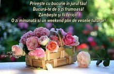 Beautiful Basket Tulip Flower Wallpaper Basket Roses Flowers Wallpaper Elegant Basket Roses Flowers Wallpaper Love The Baske.