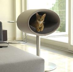 Modern Cat Beds – Rondo by Meyer | DigsDigs