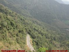 Lakkidi View Point - The Gateway of Wayanad