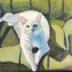 Susan M. Spohn, White Cat