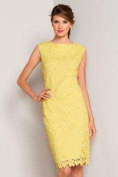 Buy Capture Lace Dress online | Shop EziBuy