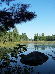 Adirondack Park Visitor Interpretive Center at Paul Smiths | Lake Placid, NY - Adirondacks