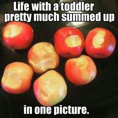This funny round up of Memes that Sum up What it's like to have a toddler, will make you feel better about the daily chaos you experience while embarking in the toddler years. So check out this fun collection of Toddler memes. Funny Parenting Memes, Funny Mom Memes, Parenting Hacks, Funny Stuff, Funny Quotes, Funny Humor, Parenting Quotes, Parenting Styles, It's Funny