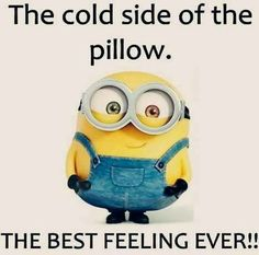 Here are few insanely funny and hilarious minions memes, you will surely love them. Feel free to share best ones with your friends ALSO READ: Most 16 Funny Pics And Memes OF The Day ALSO READ: Top 18 passive aggressive meme Amor Minions, Minions Love, My Minion, Purple Minions, Evil Minions, Funny Minion Pictures, Funny Minion Memes, Minions Quotes, Minions Images
