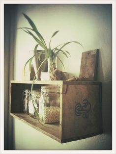 Vintage box/crate as a shelf