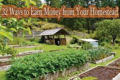 32 Ways to Earn Money from Your Homestead - Lil Moo Creations