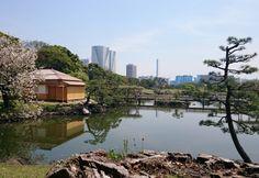 Kon'nichiwa Bintou – Tokyo | Bonjour Bintou  Hamarikyu Garden