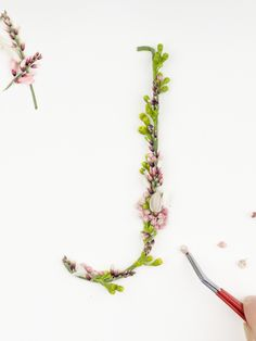 http://alicemourou.squarespace.com/#/blossomtype/