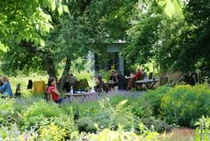 El Blog de La Tabla: Tirups Herb Garden