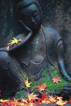 Buddha fall leaves