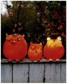Pumpkin Carving with Martha Stewart: Making Owls