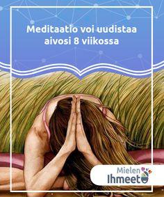 Meditaatio voi uudistaa aivosi 8 viikossa  Meditaatio voi #muuttaa aivomme 8 viikossa. Se #muokkaa muistiin, empatiaan ja stressiin liittyviä alueita, samoin kuin niitä alueita jotka liittyvä tarkkaavaisuuteen ja #psyykkiseen eheytymiseen. #psycologia Health Fitness, Mindfulness, Fitness, Consciousness, Health And Fitness, Gymnastics, Awareness Ribbons
