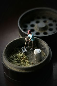 Just Mowing My Shrubbery | Medical Marijuana Quality Matters- Repined-5280mosli.com -Organic Cannabis College- Top Shelf Marijuana- | #OrganicCannabis