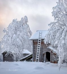 Snow And Ice, Winter Beauty, Winter Scenes, Finland, Winter Wonderland, Tea Lights, Nostalgia, Cottage, Seasons