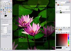 Whats the best FREE Photo Editing software that can be downloaded online?
