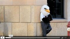 If an eagle can can go to school in Minneapolis, you can. http://youtu.be/pbBQU-B3Re0