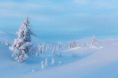 Tykkylumiset puut tunturissa, Satu Juvosen kuva. Satu, Mountains, Country, Winter, Travel, Winter Time, Viajes, Rural Area, Destinations