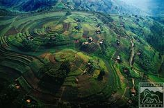 A stunning aerial shot of a couple of Ugandan hills that have been colonised for farming.