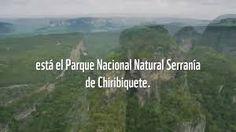 Serranía del Chiribiquete Reserva Natural, National Parks