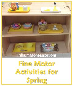 Fine Motor Activities for Spring (from Trillium Montessori) - Easily adapted for any time of year. Montessori Preschool, Montessori Education, Montessori Materials, Class Activities, Spring Activities, Preschool Activities, Early Learning, Fun Learning, Montessori Practical Life