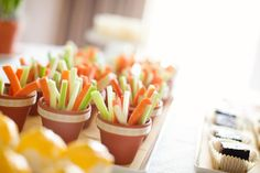 veggie pots: mini terra cotta pots, lined with a plastic cup, for ranch dip and veggie sticks