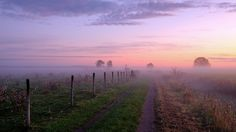 Lead into the mist | von jarnasen
