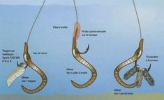 The best trout fishing gear . Carp Fishing Rigs, Trout Fishing Tips, Pike Fishing, Fishing Knots, Saltwater Fishing, Kayak Fishing, Fishing Hole, Fishing Tricks, Fishing Stuff