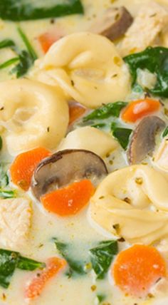 Creamy Chicken, Spinach and Mushroom Tortellini Soup.