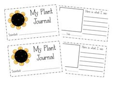 Bring a new wild plant each week, kids draw it and record edibility, uses, etc