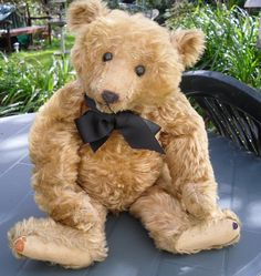 Vintage Steiff bears