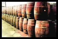 Look at these amazing barrels of wine!