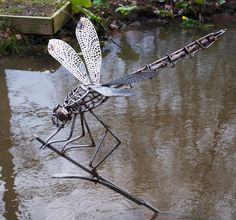 Dragonfly garden sculpture More