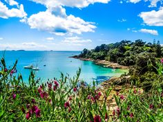 Hekerua Bay on Waiheke Island in New Zealand