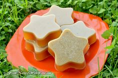 Solid Shampoo Bar for Dogs tUTORIAL  Fall is a great time for a dog bath, and why not try a customized shampoo bar for a change? The Natural Beauty Workshop has a tutorial for a solid shampoo bar using neem oil. The recipe uses their melt & pour base, but I'm sure you could experiment with what you have on han