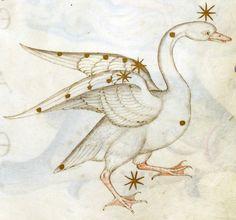constellation Cygnus Fazio degli Uberti, II Dittamondo, Milan ca. 1447 BnF, Italien 81, fol. 175r