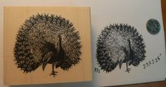 Peacock rubber stamp WM P31 *** Be sure to check out this awesome product.