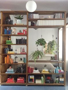 Idea for half wall. Book shelf with space for hanging plants.