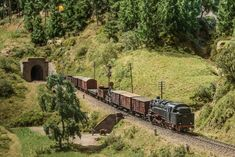 Dieter Bertelsmann's fabulous Hochschwarzwald model railway represents the Höllental Railway, or the Hell valley railway, which lies in the Black Forest in Escala Ho, Train Tunnel, Forest Scenery, Hobby Trains, Model Train Layouts, Black Forest, Model Trains, Hobby Electronics, Ho Scale