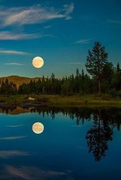 The photograph is an example of balance in nature. The reflection of the trees and moon on the lake make it seem like land and then the upside down. If folded and put together they would make up one exact forest and moon. Beautiful Moon, Beautiful World, Shoot The Moon, Moon Pictures, Night Pictures, Summer Nights, Summer Evening, Belle Photo, Night Skies