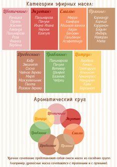 Essential Oil Blends, Essential Oils, Bath Boms Diy, Bath Art, Homemade Cosmetics, Essential Oil Perfume, Natural Health Remedies, Kitchen Witch, Soap Recipes