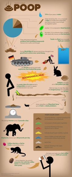 The Facts About Poop
