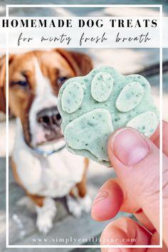 Puppy Treats, Diy Dog Treats, Dog Treat Recipes, Healthy Dog Treats, Dental Treats For Dogs, Birthday Dog Treats, Frozen Dog Treats, Dog Bakery, Homemade Dog Food