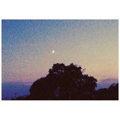【halpiiiiii】さんのInstagramをピンしています。 《今日の夜の空は、 三日月と木星がはっきりと見えた 綺麗な空だった。  #石井ゆかり さんの#Twitter によると、どうやら#乙女座 の運気がいいらしい。私や。  いいことあるよにがんばろー! 明日はライブだし、楽しみだな😌  #木星#jupiter#三日月#moon#愛のプレリュード 月#8月#天体#森#夜景#夜空#埼玉#川越#ミュージシャン#歌手#ライブ#イベント#明日#だよ#comeon》