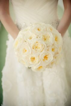 White Patience Garden Rose Roses Photo By Httpkimmaguireblogspotcom Inside Inspiration Decorating