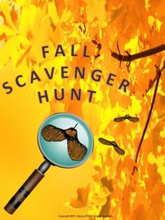 Going on a scavenger hunt is a great way to start the school year! Students can spend time with classmates while observing the sights of Fall and learning about the great outdoors!