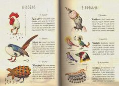 An Introduction to the Codex Seraphinianus, the Strangest Book Ever Published