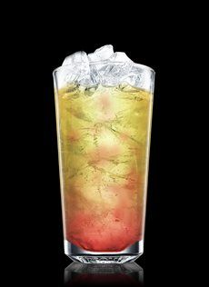 Absolut Melon Cup