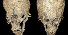 Misterioso cranio alienígena encontrado na África poderá mudar a história humana! ~ Sempre Questione - Últimas noticias, Ufologia, Nova Ordem Mundial, Ciência, Religião e mais.
