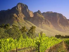 Franschhoek, South Africa home of La Cle des Montagnes